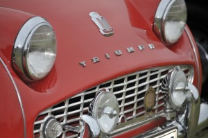 TR3A grille